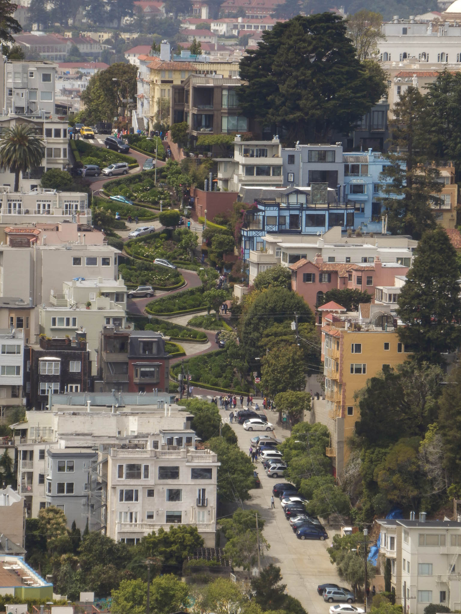 Lombard Street as seen from Coit tower